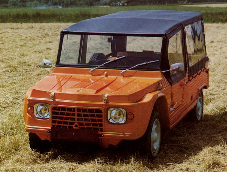Mehari oranje in gemaaid veld (reclamefoto)