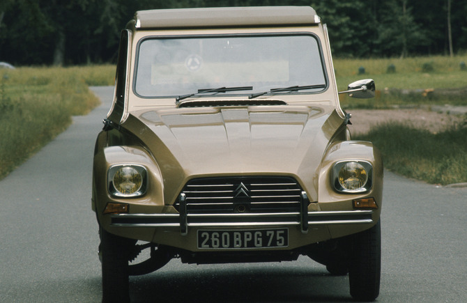Dyane frontaal bruin metallic reclamefoto